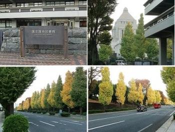永田町.jpg